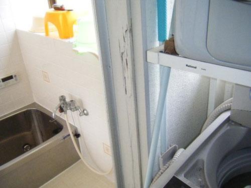 浴室入口ドア枠 ヤマトシロアリによる被害